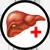 Лекарственные и магические растения Icon_liver